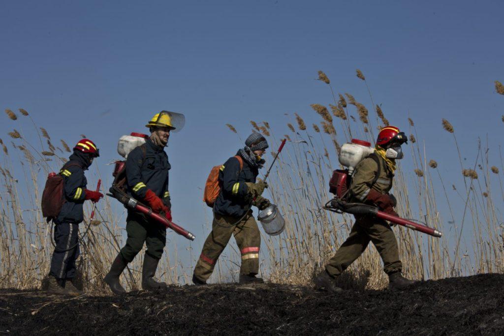 ic5b8100 1024x683 - Пожарное добровольчество